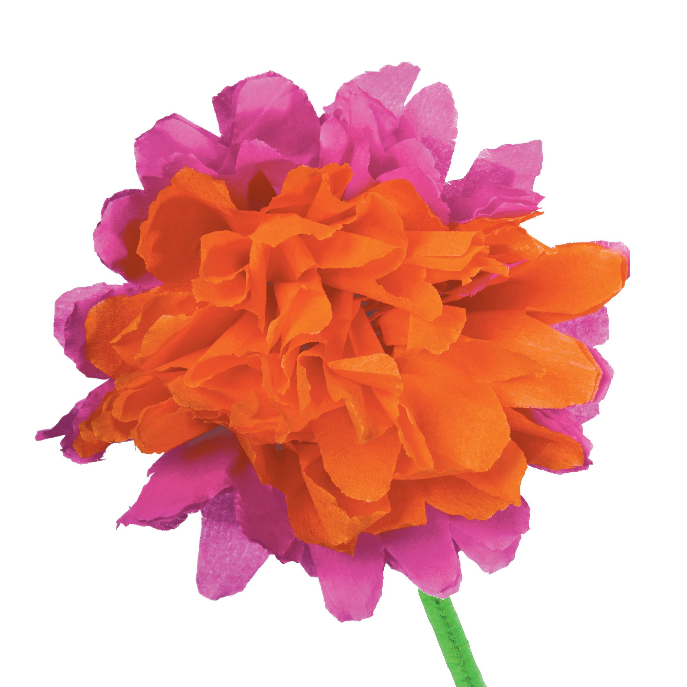 eeBoo Studio Crepe Paper Flowers