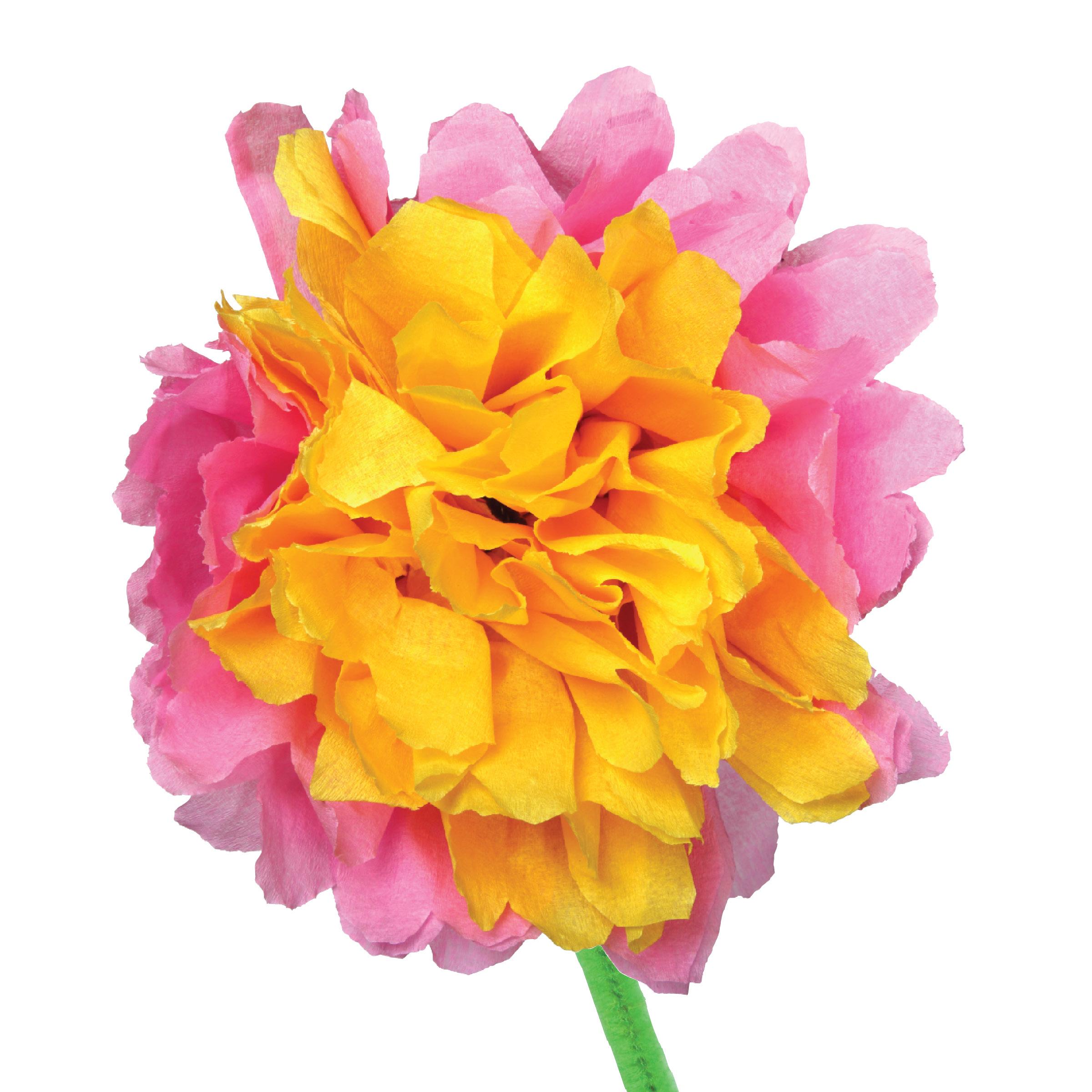 Eeboo studio crepe paper flowers for Crepe paper wall flowers